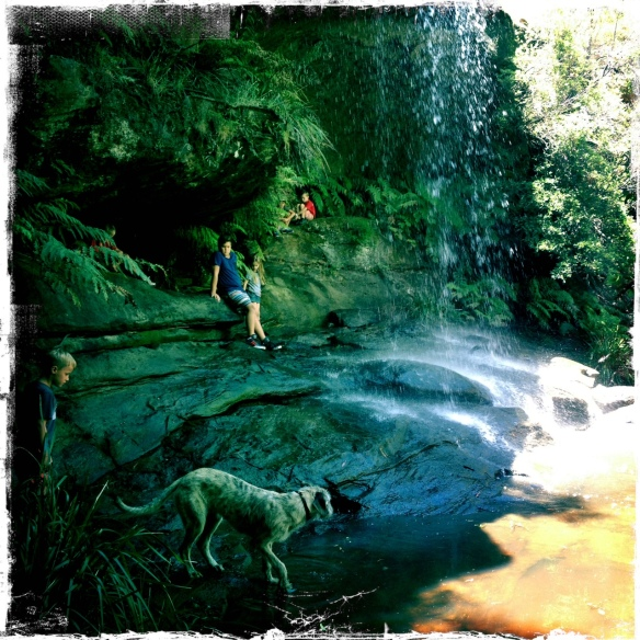 waterfall2013